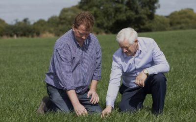 Planning for a successful reseeding period