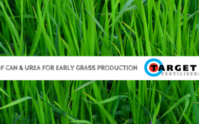 Use of CAN (27%) and Urea (46%) for Early Grass Production