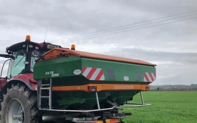 Urea application to maximise early grass production